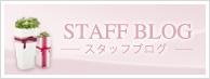 【STAFF BLOG】スタッフブログ